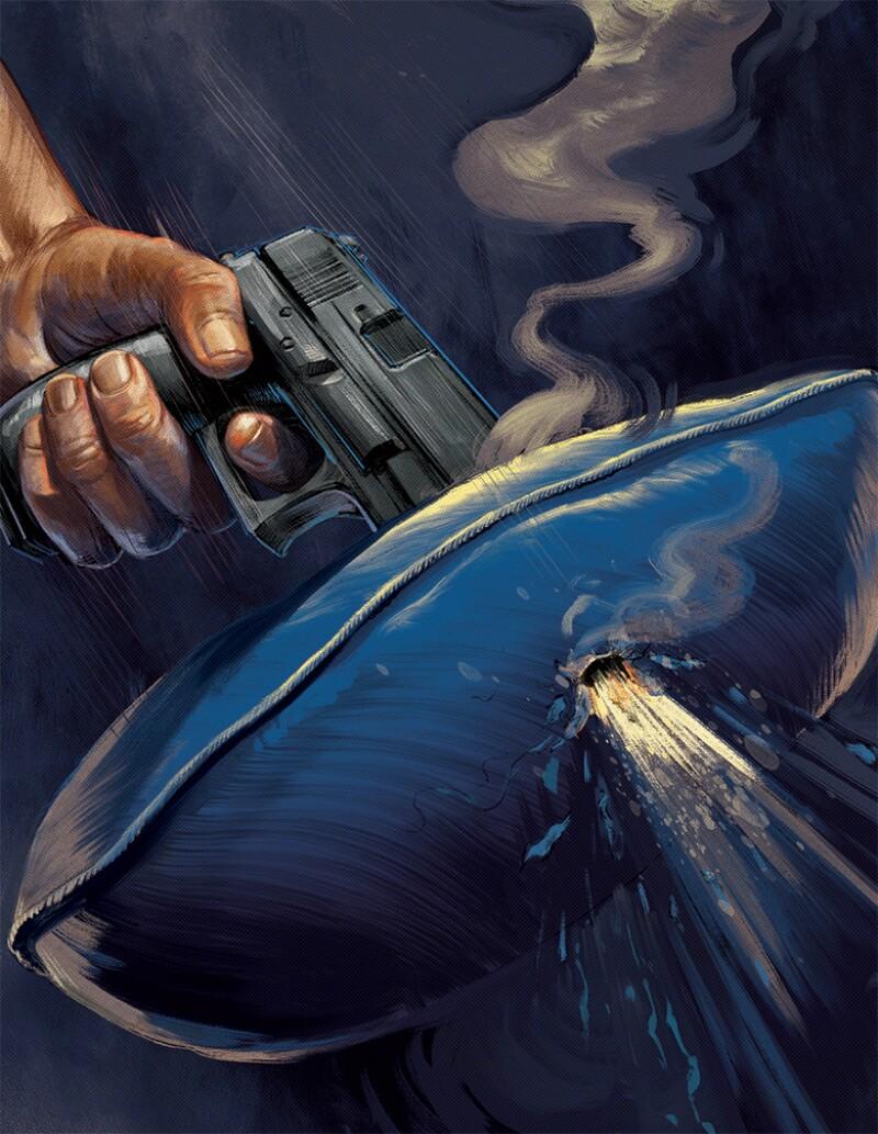 pistol-pillow-illo-780