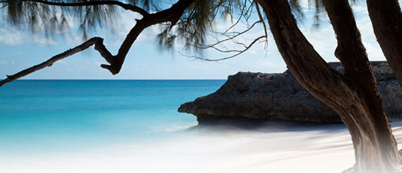 Barbados tropical beach-600