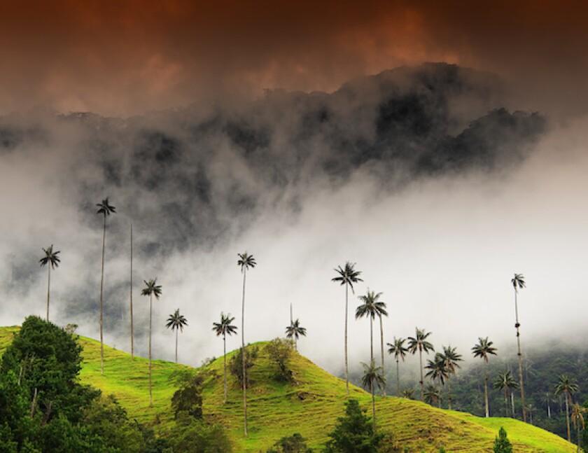 Colombia, valle de cocora, Salento, Quindio, Clouds, storm, rain, dark, LatAm