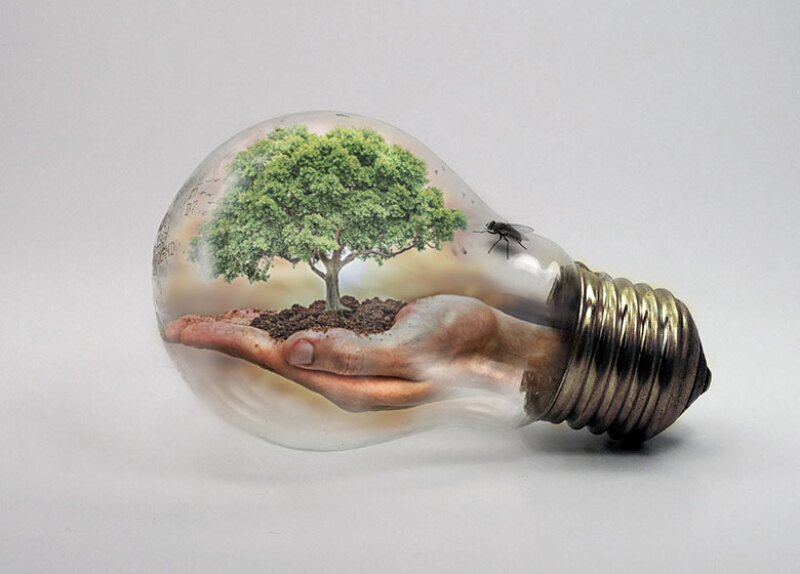 lightbulb-tree-green-environment-780.jpg