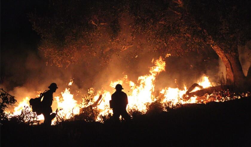 forestfires-istock-894667710-web.jpg