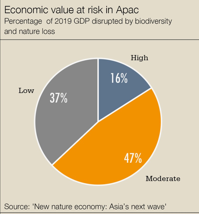 cw-nature-economy1.jpg