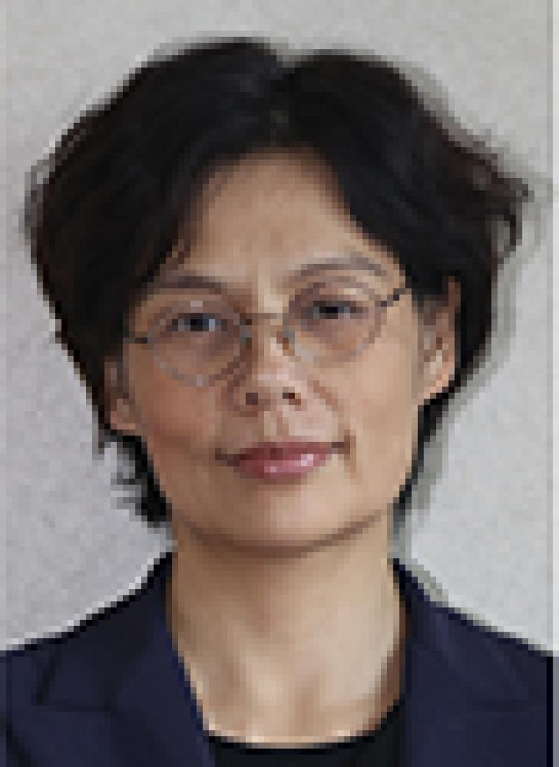 Lin Caiyi 91q