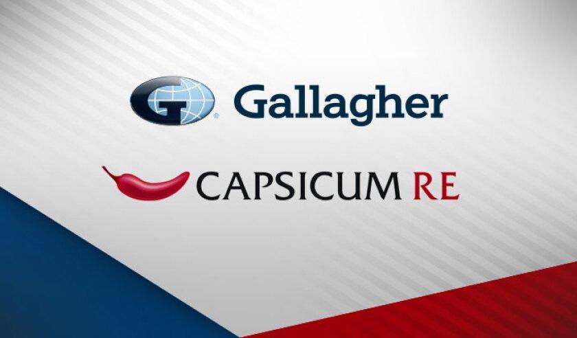 gallagher-capsicum-logos.jpg