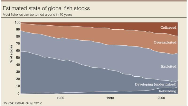 fish_stocks-780
