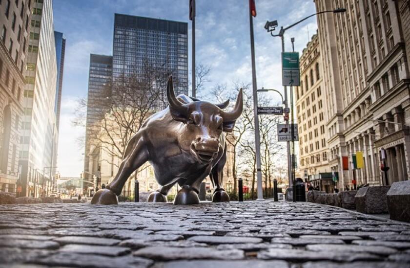 Bull_new_york_Adobe_575x375