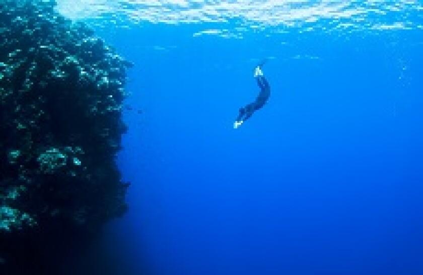 Dive_diver_plunge_Fotolia_230x150