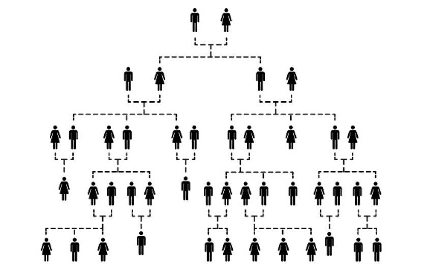family tree adobe stock 575 375