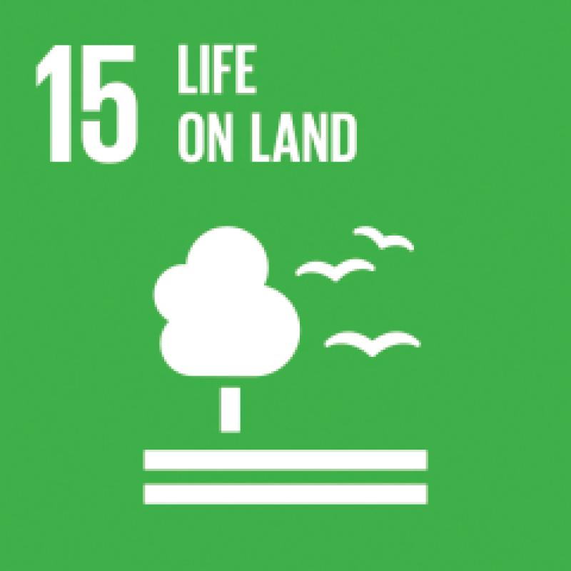 15-life-land