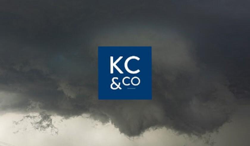 Karen Clark Co Storm KCC.jpg