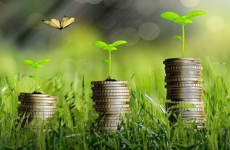 green-plants-grow-money-free-960.jpg