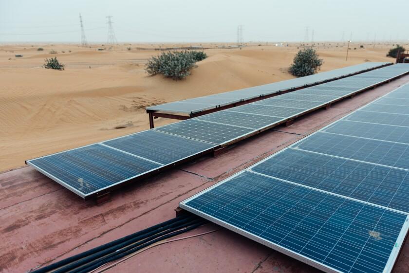 UAE sustainable survey