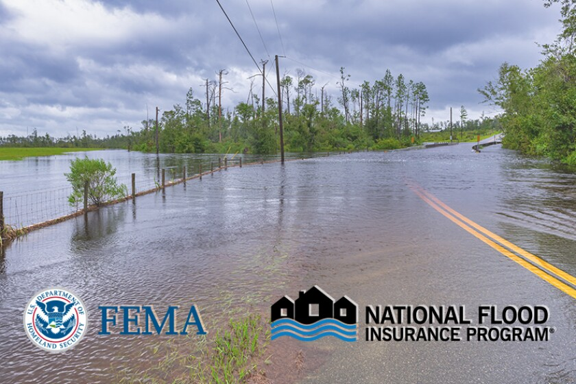 FEMA NFIP logo flood damage.jpg