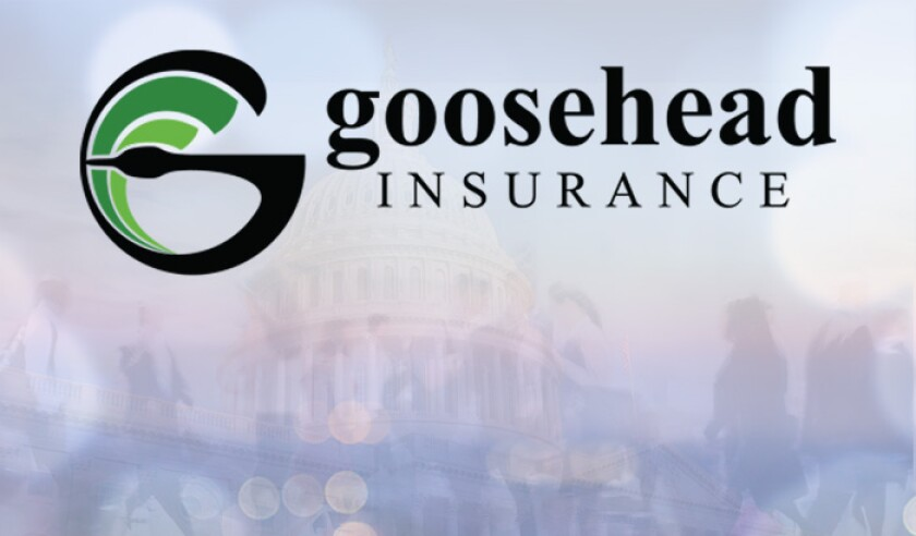 goosehead-insurance-logo-abstract.jpg