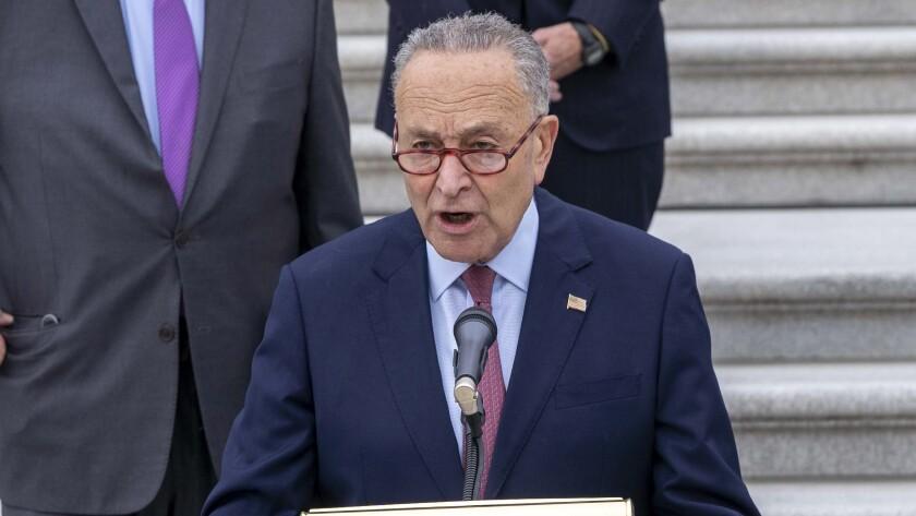 Chuck Schumer photo senate democrats v2.jpg