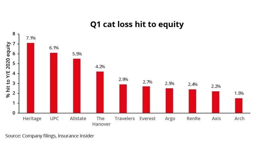 Q1 cat main.jpg