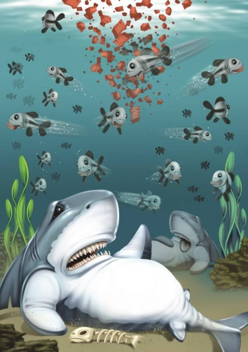 shark illustration-400