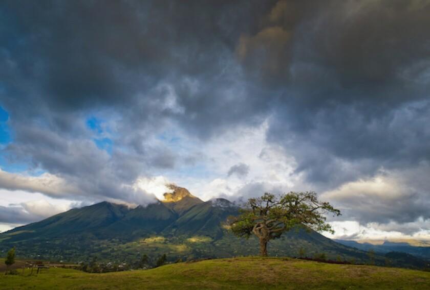 Ecuador, storm, LatAm, 575, oil, sell-off, slump