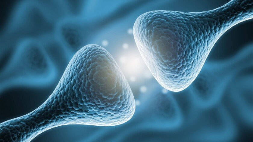 Synapse neurone nerve communication from Adobe 25Jun20 575x320