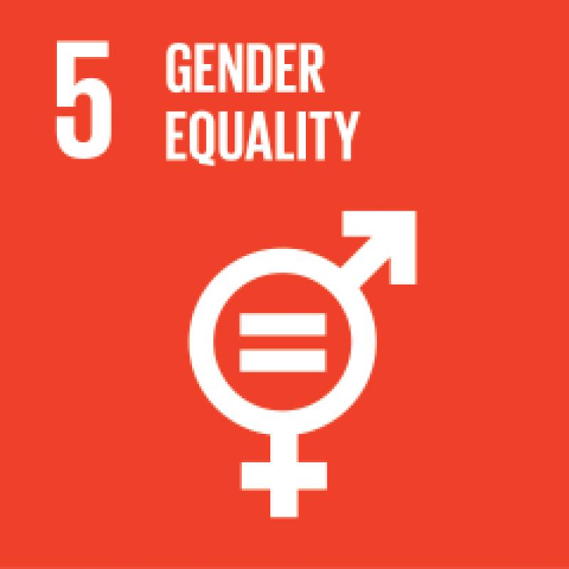 5-gender-equality