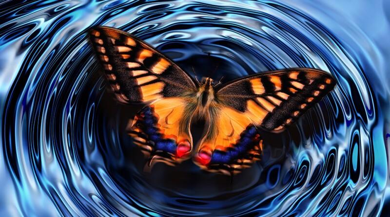 ripples-butterfly-g00e4e4948_1920.jpg
