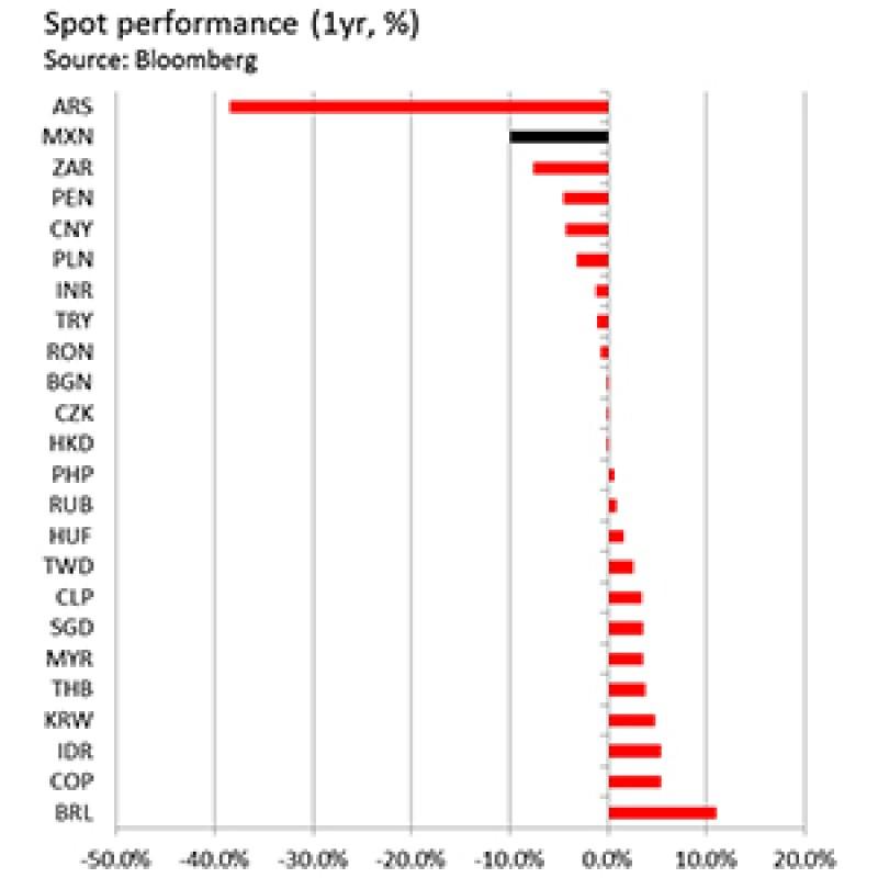 sport performance 300x300