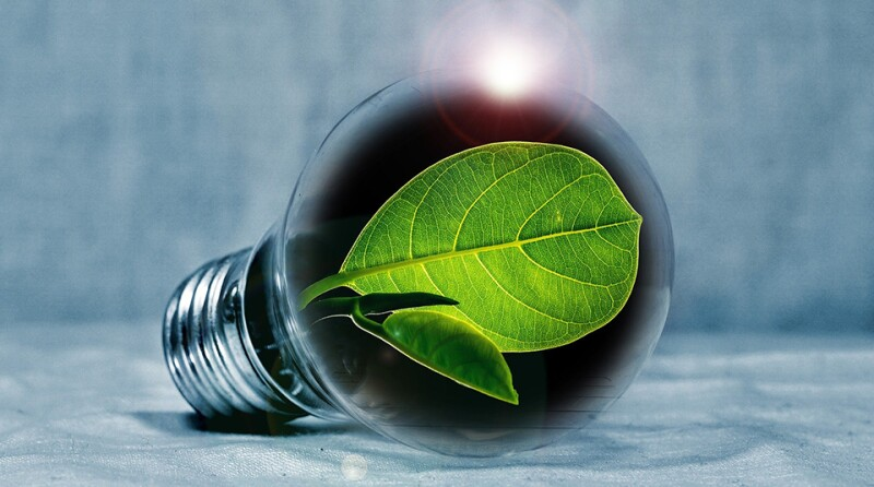 light-bulb-960x535.jpg