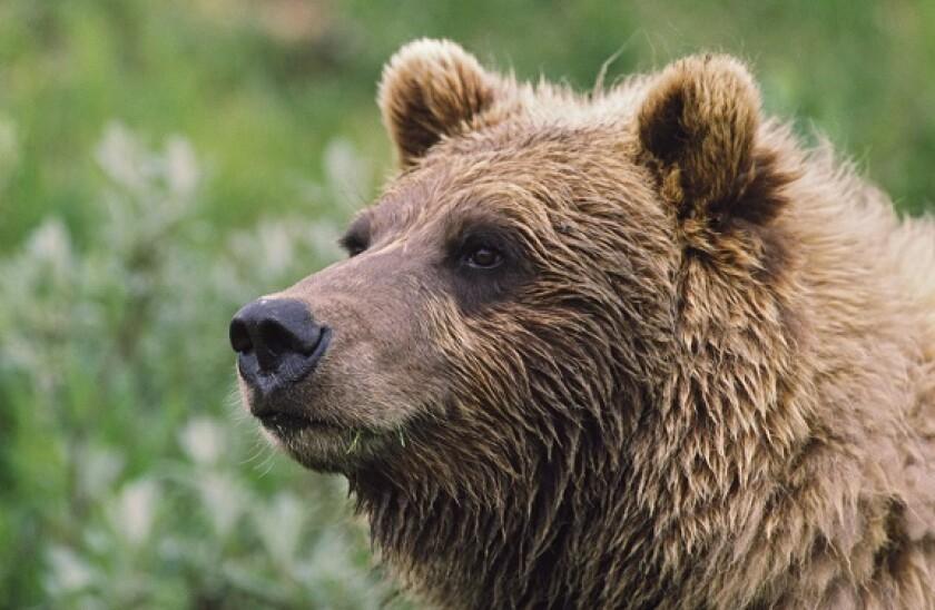 London_Stock_Exchange_bear_market_PA_575_375
