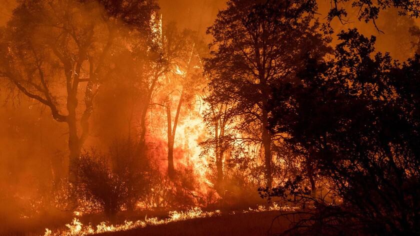 CA: The Creek Fire