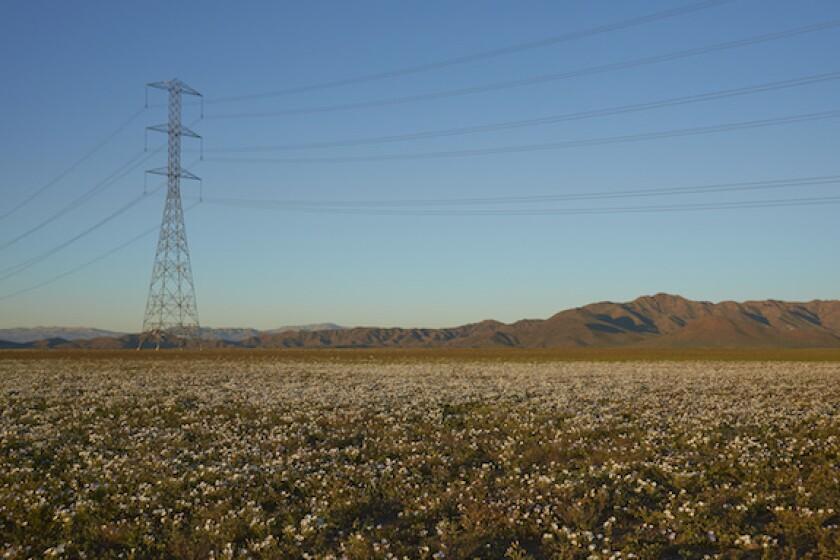 Chile, transmission, atacama, electricity, power, LatAm, 575