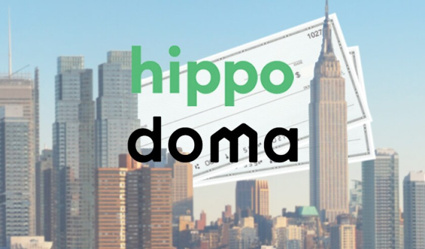 Hippo Doma blank check NYC.jpg