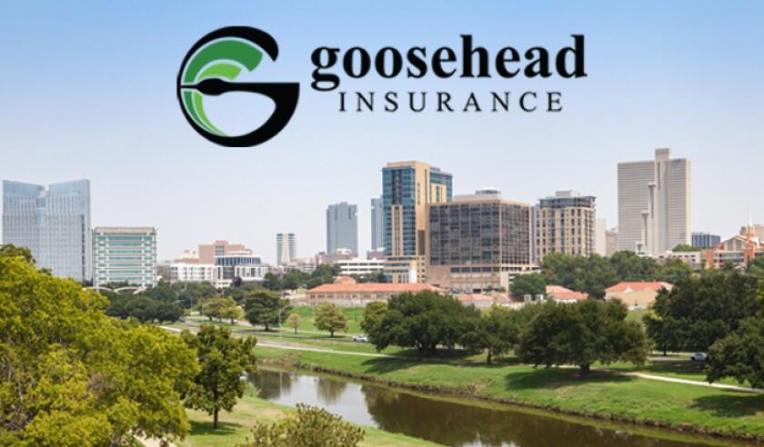 goosehead-insurance-fort-worth-texas.jpg