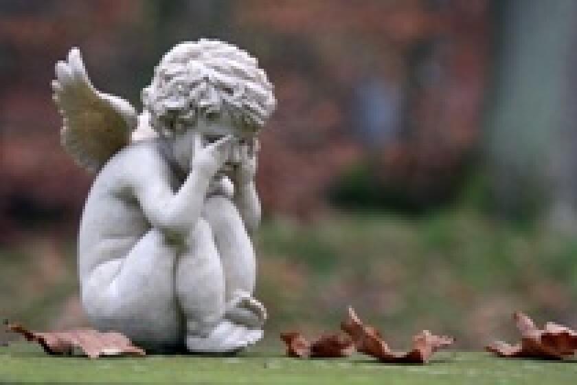 Fallen angel 230x140