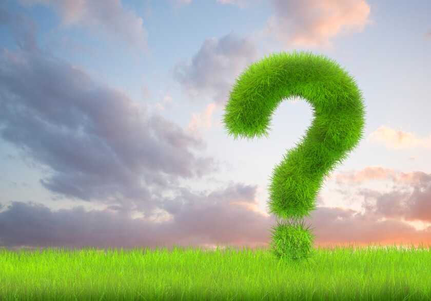 A question mark sign in lush green grass on a cloudscape  background