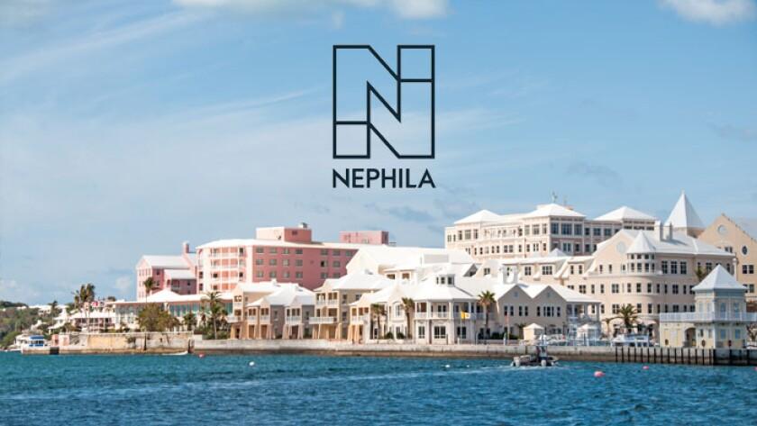 Nephila logo bermuda no bar.jpg