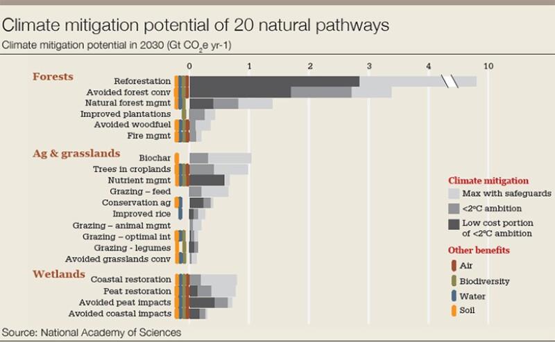 Carbon_chart_climate-780.jpg