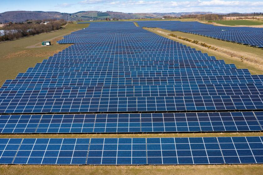 Aerial view from drone of solar panels in  solar energy farm in Scotland, UK