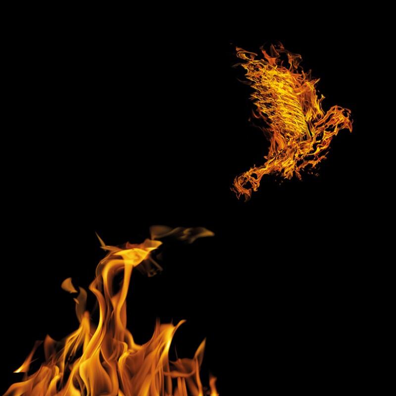 phoenix-fire-istock-780