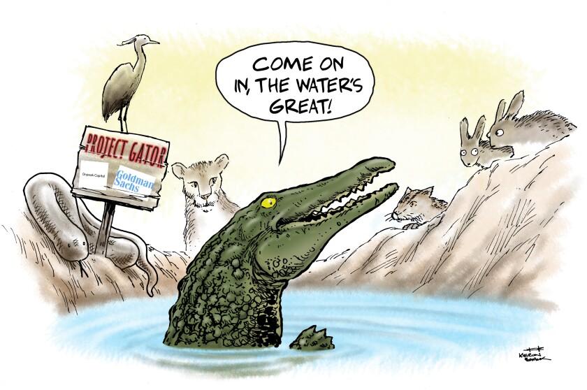Gator cartoon.jpg