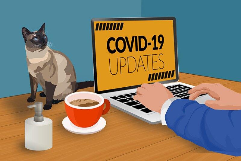 covid-19-working-home-780.jpg