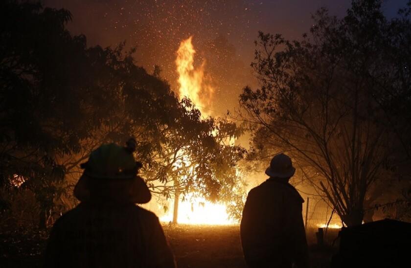 Australia_forest_fire_PA_575x375_jan20.jpg