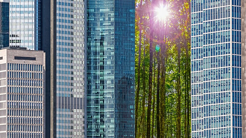 offices-climate-change-banking-iStock-960.jpg