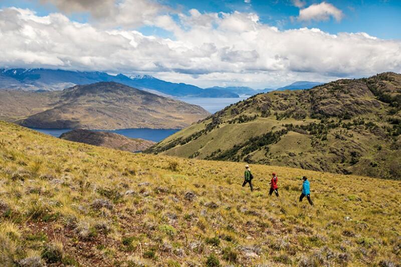 Parque-Nacional-Patagonia-Tompkins-Conservation-780.jpg