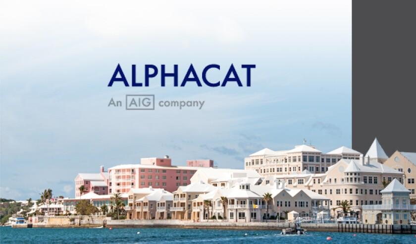 alphacat-logo-bermuda.jpg